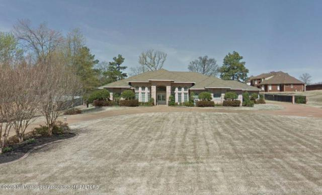8396 Belmor Lakes Drive, Olive Branch, MS 38654 (#314299) :: Eagle Lane Realty