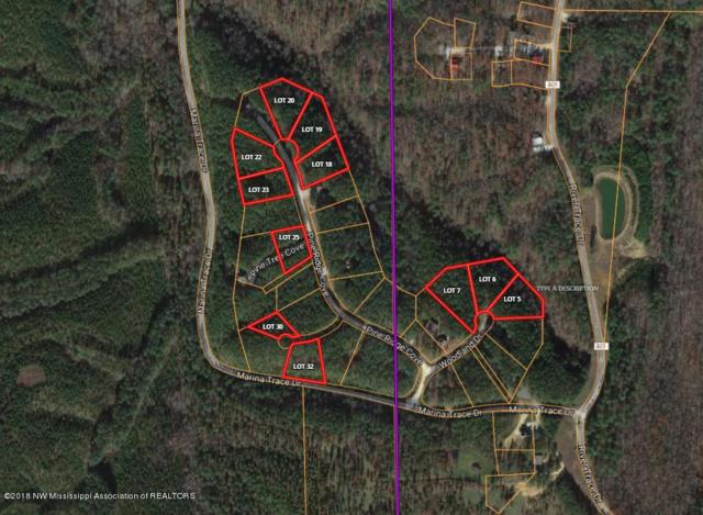 Lot 18 Union Harbor Resort, Iuka, MS 38852 (MLS #314655) :: The Live Love Desoto Group