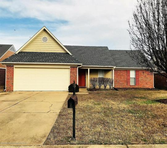 6586 Sinclair Drive, Horn Lake, MS 38637 (#314876) :: JASCO Realtors®