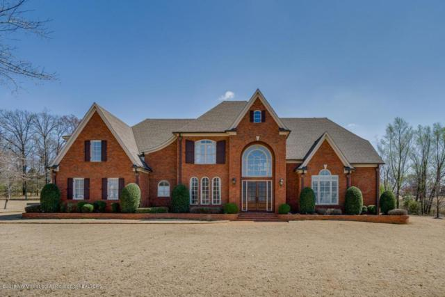 4703 E Spring Pl Cove, Olive Branch, MS 38654 (MLS #315221) :: Signature Realty