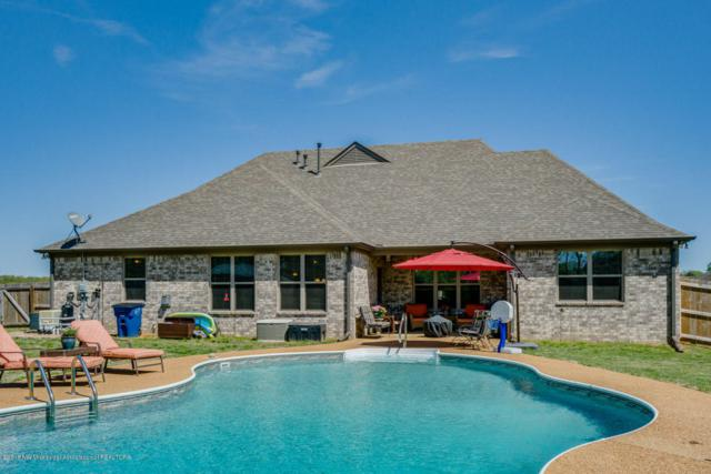 4189 Carolyn Mitchell Drive, Olive Branch, MS 38654 (#315885) :: Berkshire Hathaway HomeServices Taliesyn Realty