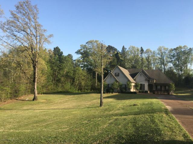 10237 Cypress Plantation Drive, Olive Branch, MS 38654 (#315888) :: Berkshire Hathaway HomeServices Taliesyn Realty
