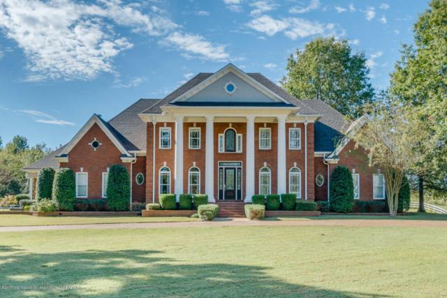 3675 College Road, Southaven, MS 38672 (#315899) :: JASCO Realtors®
