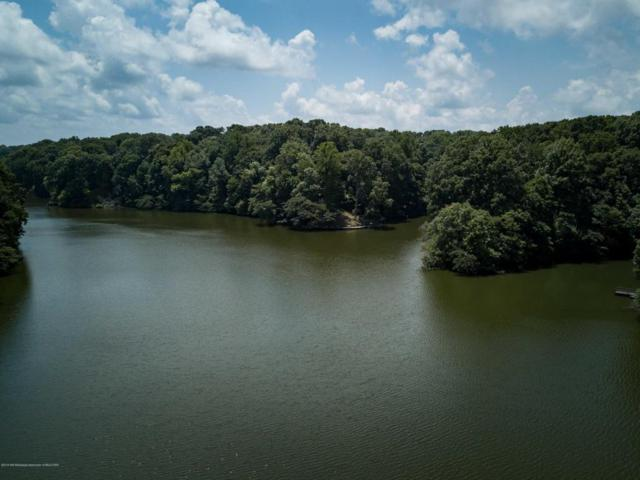 Lot 119 Dogwood Cove, Hernando, MS 38632 (MLS #316060) :: Signature Realty