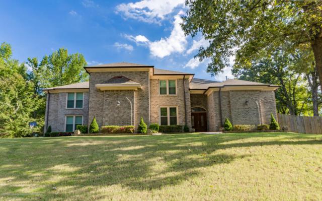 5699 Austin Road, Lake Cormorant, MS 38641 (MLS #316231) :: The Home Gurus, PLLC of Keller Williams Realty