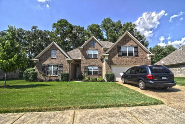 6372 Red Bird Drive, Olive Branch, MS 38654 (#318270) :: Berkshire Hathaway HomeServices Taliesyn Realty