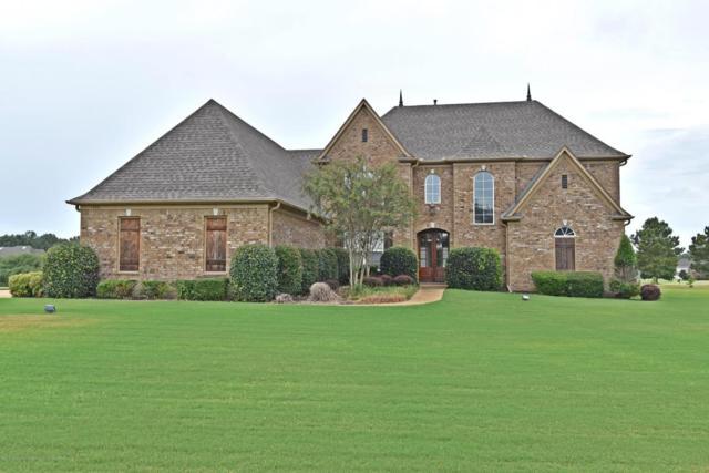 14251 Aspen Lane, Olive Branch, MS 38654 (MLS #318395) :: The Home Gurus, PLLC of Keller Williams Realty