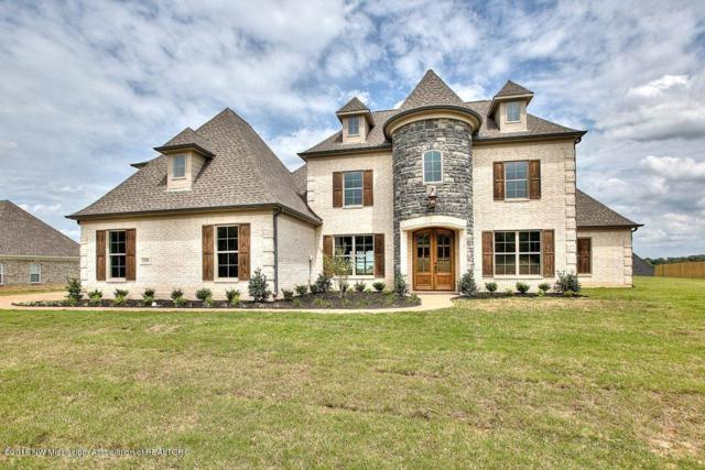 10542 Long Bridge Road, Olive Branch, MS 38654 (MLS #318410) :: Signature Realty