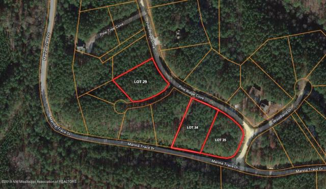 Lot 34 Union Harbor Resort, Iuka, MS 38852 (MLS #318480) :: Gowen Property Group | Keller Williams Realty