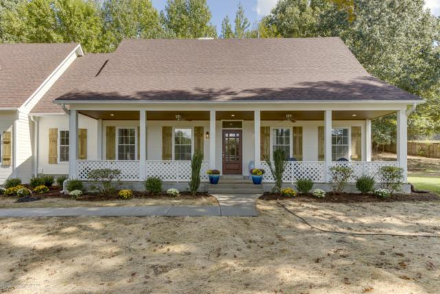 9401 Austin Drive, Olive Branch, MS 38654 (MLS #319363) :: Signature Realty