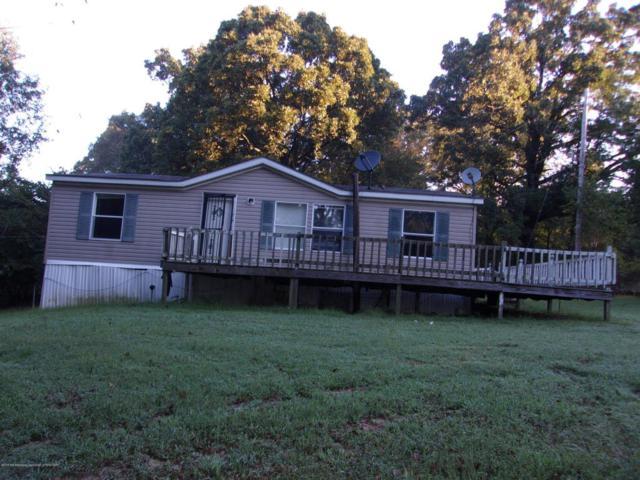4195 Highway 305, Coldwater, MS 38618 (MLS #319365) :: The Home Gurus, PLLC of Keller Williams Realty