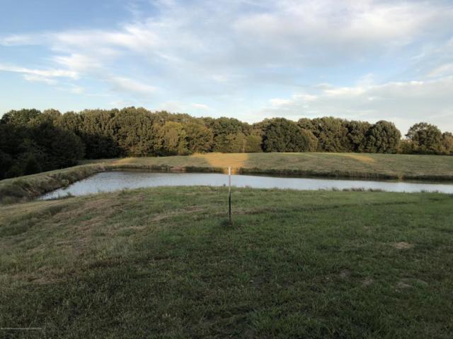 4300 Highway 305 South, Hernando, MS 38632 (MLS #319435) :: The Home Gurus, PLLC of Keller Williams Realty