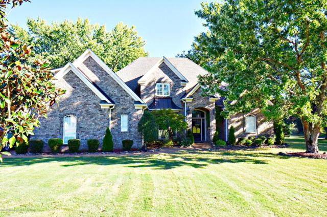 3169 Bridgemoore Drive, Nesbit, MS 38651 (MLS #319461) :: Signature Realty