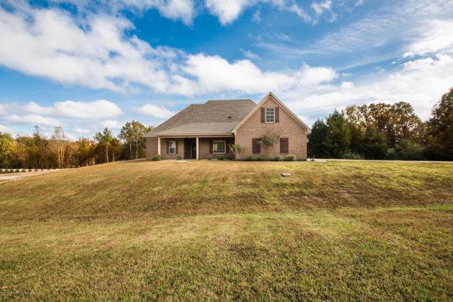 162 E Byhalia Creek Farms Road, Byhalia, MS 38611 (MLS #319904) :: Signature Realty
