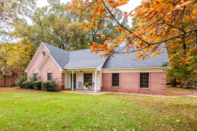 4625 Miranda Drive, Olive Branch, MS 38654 (MLS #319920) :: Signature Realty