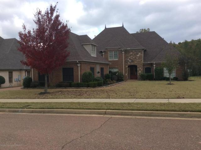 6458 Cody Cove, Olive Branch, MS 38654 (MLS #319966) :: Signature Realty
