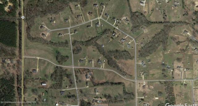 40 S Moore Crossing, Byhalia, MS 38611 (MLS #319986) :: Signature Realty