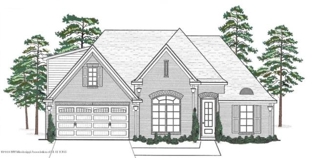 3696 Braddock Cove, Southaven, MS 38672 (MLS #320346) :: Signature Realty