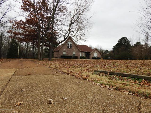3793 Forrest Park Cove, Horn Lake, MS 38637 (MLS #320348) :: Signature Realty