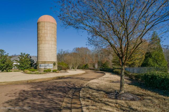 38 Spring Place Estates, Olive Branch, MS 38654 (MLS #320353) :: Signature Realty