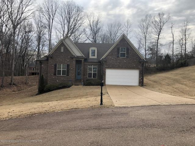 4905 Huron Road, Nesbit, MS 38651 (MLS #320535) :: Signature Realty