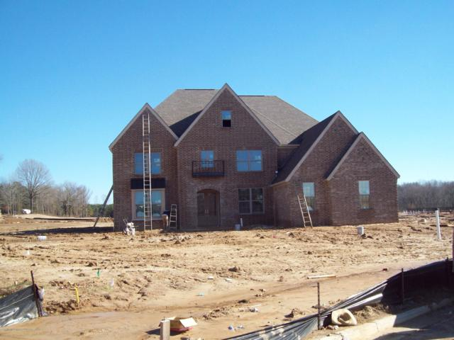 7178 Harrier Drive, Olive Branch, MS 38654 (MLS #320547) :: Signature Realty
