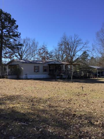 130 Co Rd 829, Blue Mountain, MS 38610 (MLS #320663) :: Signature Realty