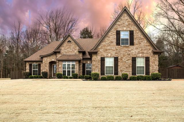 3887 Glenda Gail Street, Southaven, MS 38672 (MLS #320776) :: Signature Realty