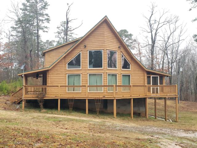 427 Lakeview Drive, Ashland, MS 38603 (MLS #321347) :: Signature Realty