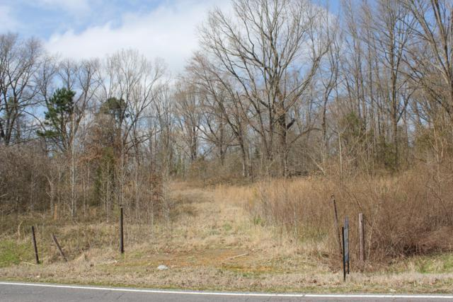 013 Nesbit Road, Nesbit, MS 38651 (MLS #321448) :: Signature Realty