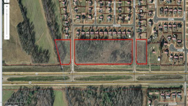 0 Goodman Road, Olive Branch, MS 38654 (MLS #321538) :: Gowen Property Group | Keller Williams Realty