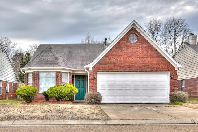 5662 Steffani Drive, Southaven, MS 38671 (MLS #321744) :: Signature Realty