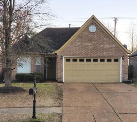 9129 Tremont Drive, Olive Branch, MS 38654 (MLS #321748) :: Signature Realty