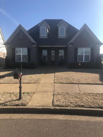 4690 Petite Loop, Olive Branch, MS 38654 (MLS #321756) :: Signature Realty