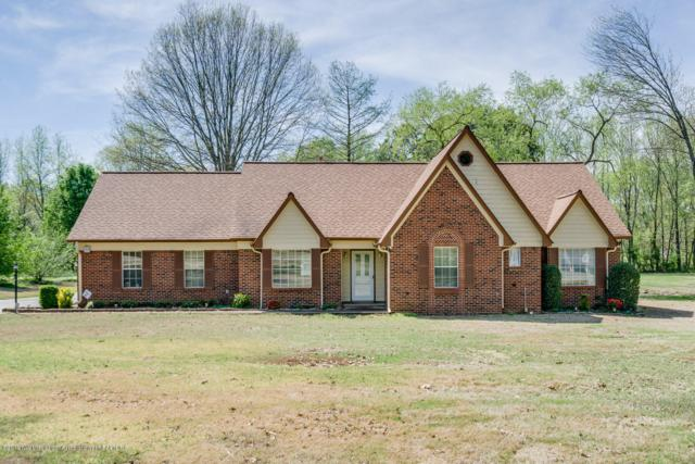 6341 Nellwood Drive, Olive Branch, MS 38654 (MLS #322253) :: Gowen Property Group | Keller Williams Realty
