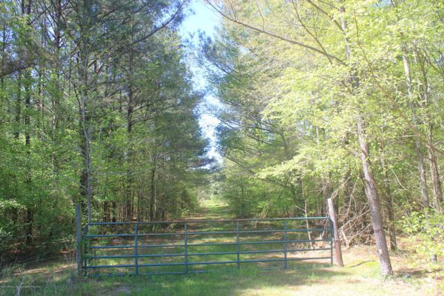 90 Mike D Road, Byhalia, MS 38611 (MLS #322278) :: Gowen Property Group | Keller Williams Realty