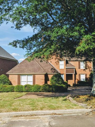 9280 Plantation Road, Olive Branch, MS 38654 (MLS #322712) :: Signature Realty