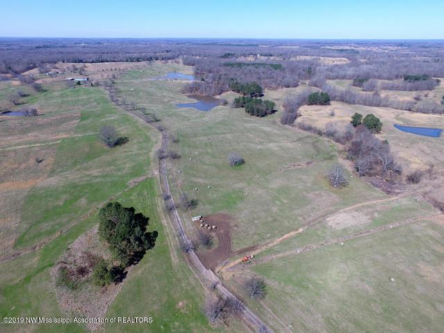 7 Ranch Drive, Senatobia, MS 38668 (MLS #323277) :: Signature Realty