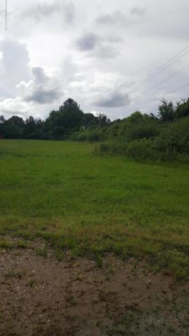 1 Taska Road, Red Banks, MS 38661 (MLS #323291) :: Gowen Property Group | Keller Williams Realty