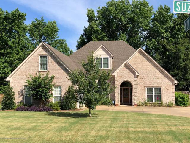 3665 Montys Circle, Southaven, MS 38672 (MLS #323417) :: Signature Realty