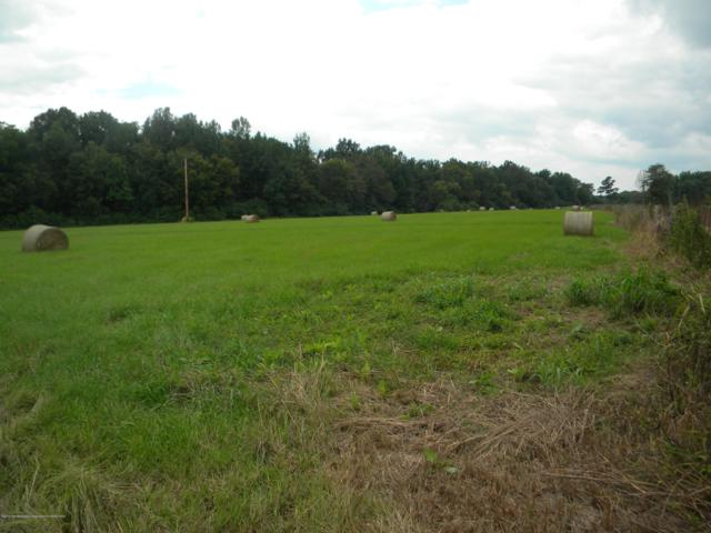 22.24 Acre Co Rd 46, Myrtle, MS 38650 (MLS #323921) :: The Live Love Desoto Group