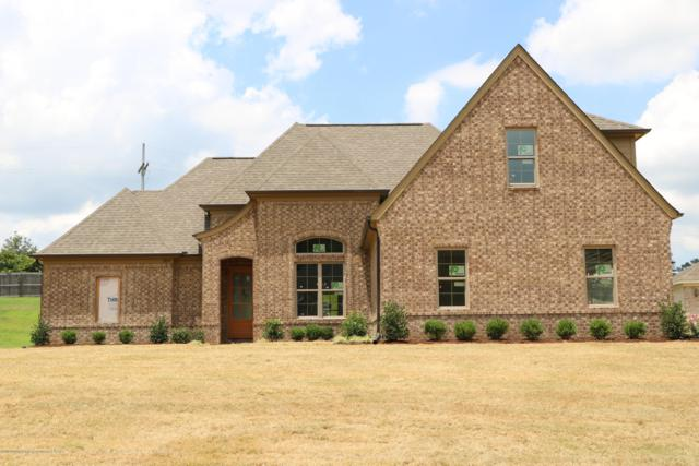 3893 Cherry Lake Cove, Southaven, MS 38672 (#323973) :: Berkshire Hathaway HomeServices Taliesyn Realty
