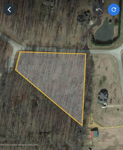 0 Golden Way, Coldwater, MS 38618 (MLS #324063) :: Signature Realty