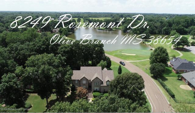 8249 Rosemont Drive, Olive Branch, MS 38654 (MLS #324098) :: Signature Realty