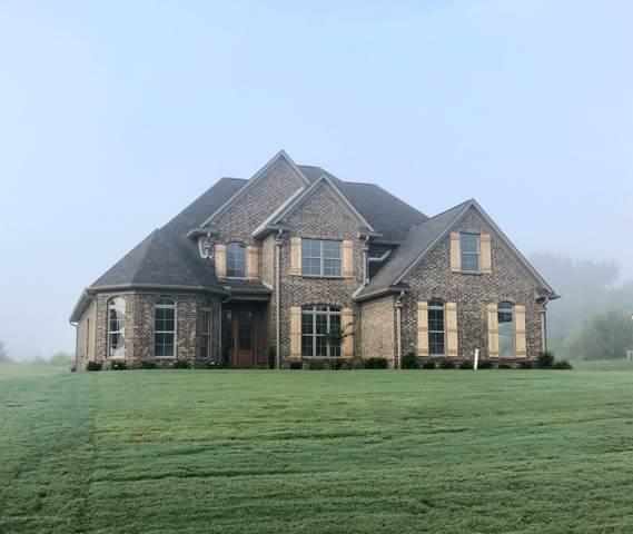 4151 Bakersfield Drive, Nesbit, MS 38651 (MLS #324431) :: Gowen Property Group | Keller Williams Realty