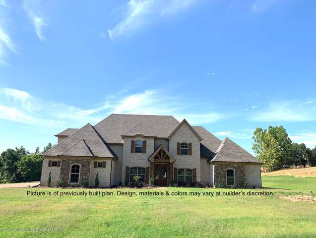 5996 Center Hill Road, Olive Branch, MS 38654 (MLS #324555) :: Signature Realty