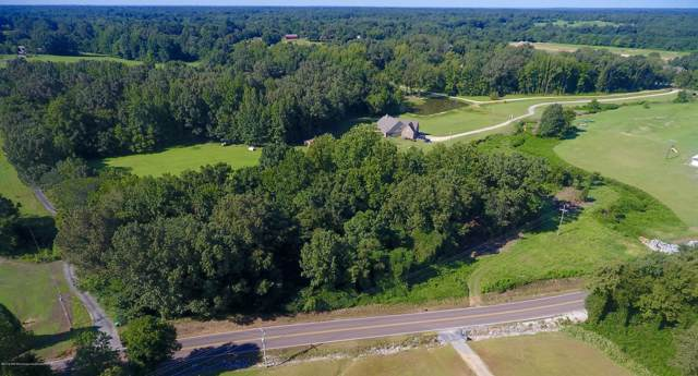 1 Holly Springs Road, Hernando, MS 38632 (MLS #324595) :: Gowen Property Group | Keller Williams Realty