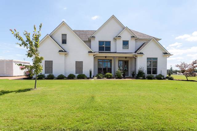 6709 W Broadwing Circle, Olive Branch, MS 38654 (MLS #324697) :: Signature Realty
