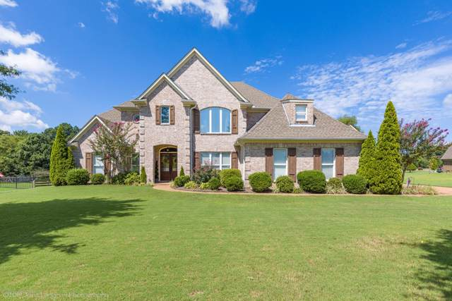 9101 Sandy Drive, Olive Branch, MS 38654 (MLS #324725) :: Signature Realty
