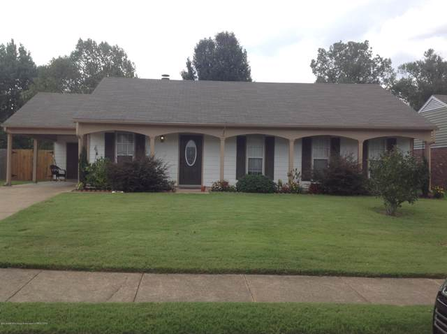 6447 Kristen Drive, Olive Branch, MS 38654 (MLS #324738) :: Signature Realty